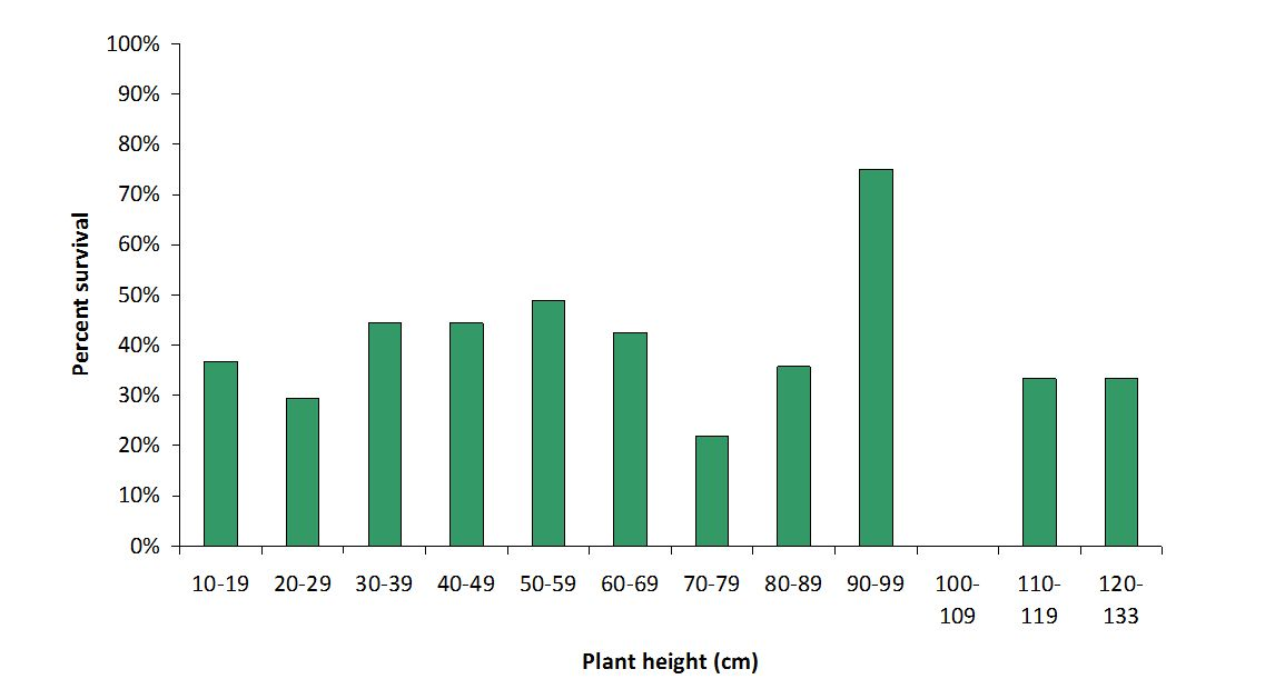 Average percent survival for each plant height band